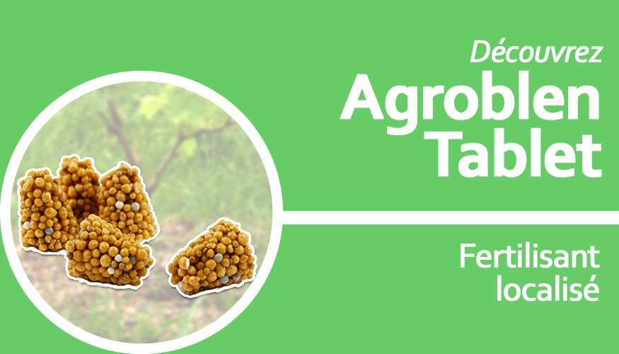 Agroblen Tablet : fertilisant localisé